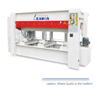 100 tons 1 layer hot press for door